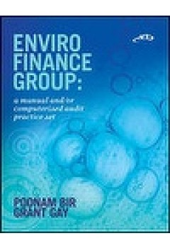 Enviro Finance Group: Audit Practice Set