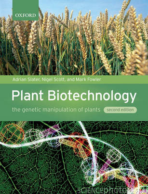 Plant Biotechnology: The Genetic Manipulation of Plants