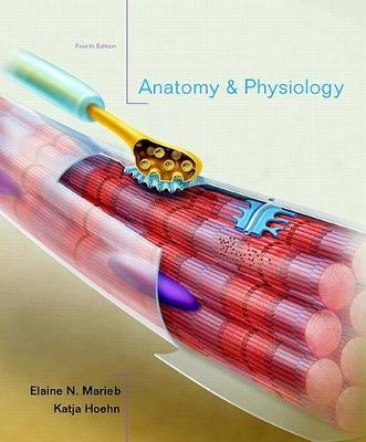 Anatomy and Physiology with Interactive Physiology 10-System Suite