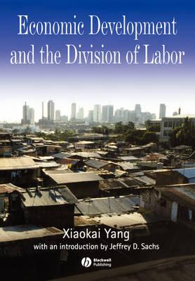 Development Economics: Inframarginal Versus Marginal Analysis