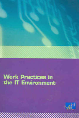 Work Practice in the IT Environment
