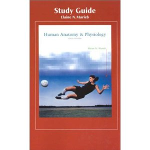 Human Anatomy And Physiology Study Guide 5ed