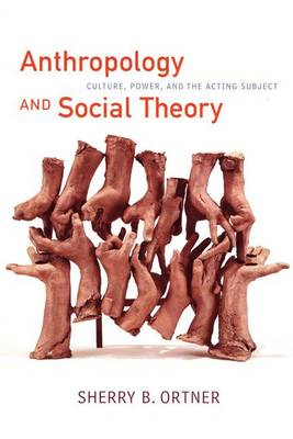 Anthropology and Social Theory: Culture, Power, and the Acting Subject
