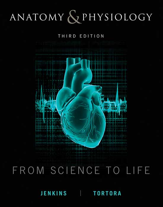 Anatomy & Physiology: From Science to Life, 3rd Edition