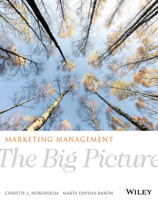 Marketing Management: The Big Picture, 1st Edition