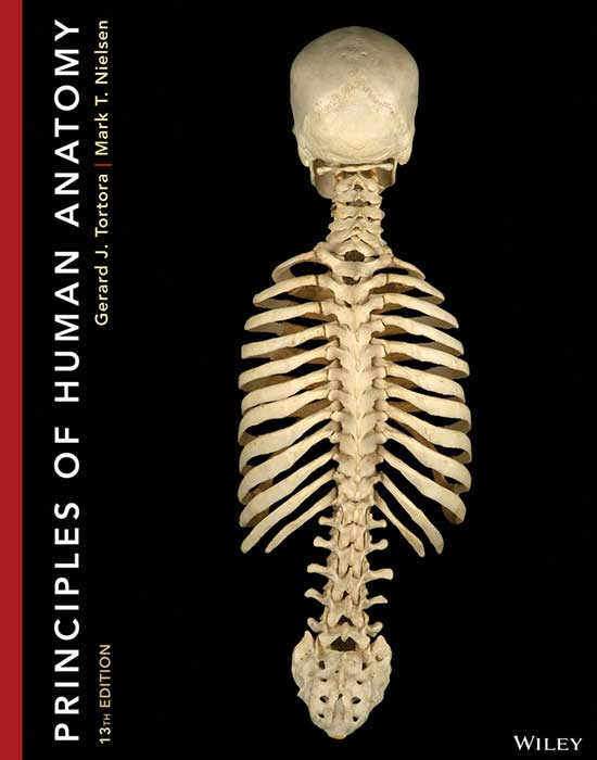 Principles of Human Anatomy, 13th Edition