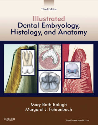 Illustrated Dental Embryology, Histology, and Anatomy