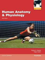 Human Anatomy & Physiology + Atlas Human Body + Interactive Physiology DVD + Mastering A&P+Little penguin Handbook (Pack Marieb/Faigley