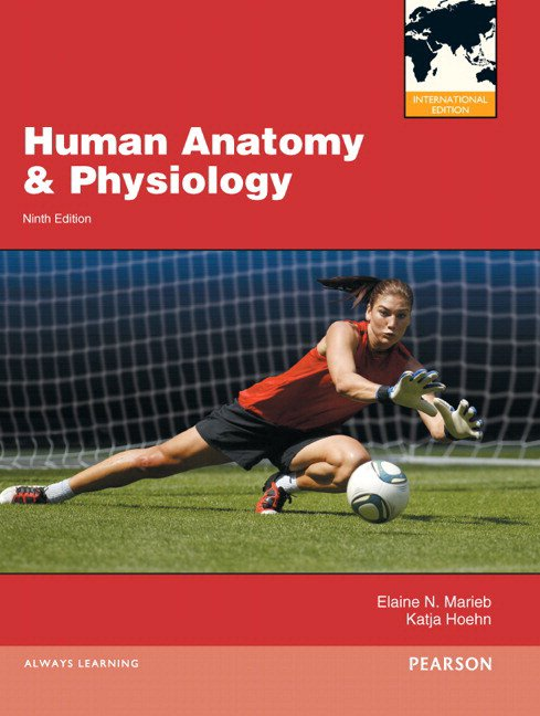 Human Anatomy & Physiology + Mastering A&P with Etext (with new copies only) + Get Ready for A&P (Value Pack)