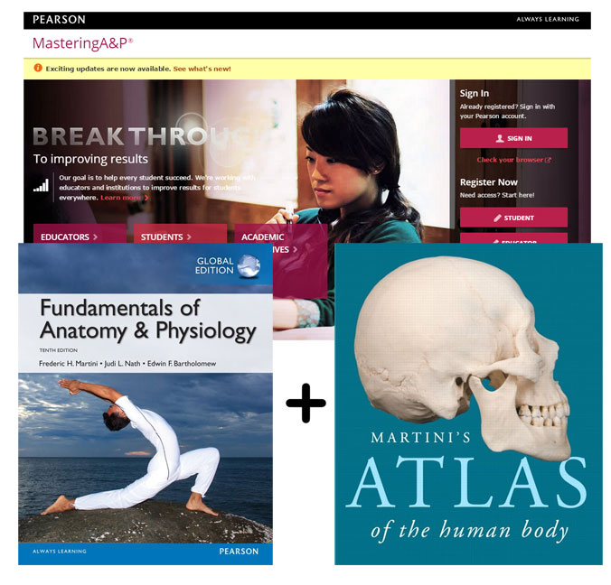 Value Pack Fundamentals of Anatomy and Physiology (Global Edition) + Martini's Atlas of the Human Body + MasteringA&P with eText