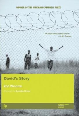 David's Story: A Novel