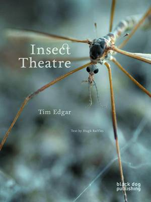 Insect Theatre